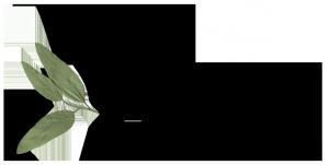logo-monastere-des-augustines